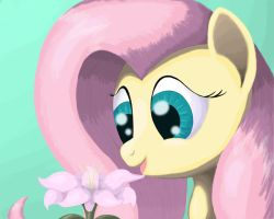Flower for Fluttershy by Grennadder