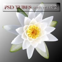 psd flowers with mask 2 by feniksas4