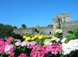 Ireland - Castle of Cahir by AgiVega