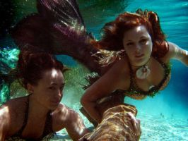 Curious mermaids by MerBellas