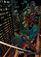Spidey Paolucci by SpicerColor
