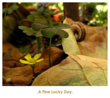 A fine Lucky Day by sara-nmt