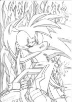.:Sonic Instict of protection:. by PhoenixSAlover