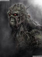 Swamp Thing - Old Man by Bohy