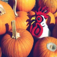Felted Chicken Head at the Pumpkin Patch by AlwaysSuagarCoated
