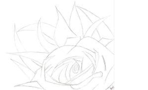 Colorless Rose by RebelsVirtue