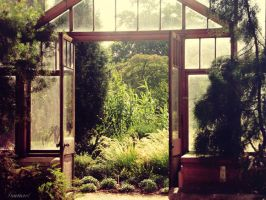 Greenhouse ~ Cambridge by iNaturel