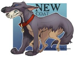 New Coat magnet design by skulldog