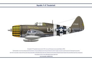P-47 USAAF 350th FS 2 by WS-Clave