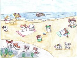 Ham Hams at the Beach by CardcaptorKatara