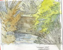 stream watercolour by rohwer