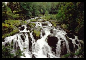 Swallow Falls 2 by Forestina-Fotos