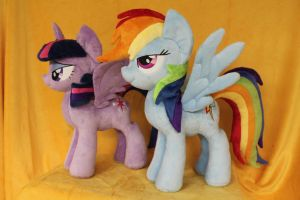 Twilight and Rainbow Dash by WhiteDove-Creations