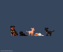 (Animated) Octobit - Day 08! by bbrunomoraes