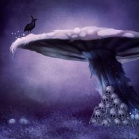premade background dark mushroom by H-stock