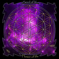 Seed of life  and flower of life by Nameda