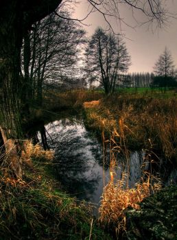 Dark river by mateuszskibicki1