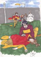 Accident at the pitch...? by Divine-Nataku