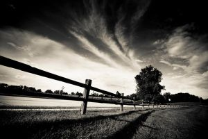 The Fence by blhayes87