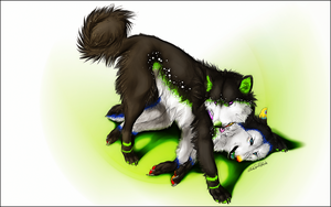 PC.:It's cuddle time:. by WhiteSpiritWolf