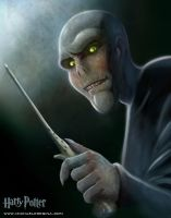 Harry Potter - Voldemort by mregina