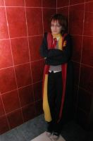 cosplay Remus Lupin by RemiLunare