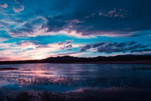 Sunset at Bosque Del Apache by bovey-photo