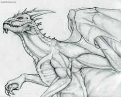 Anthro Dragon by Beast3