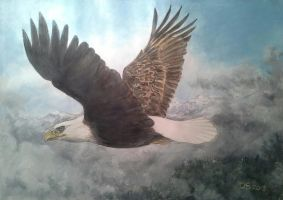 bald eagle in flight by acrylicwildlife