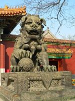 Lion at Yonghe Gong by Hansmar