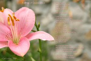A drop of Quiescence by AwakenAngel