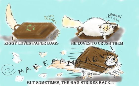 Paper Bag Attack by FairLily