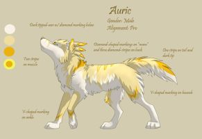 Character Sheet 7 - Auric by Kiarei-star