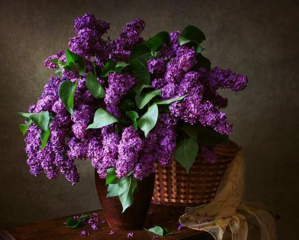 Still life with a bouquet of lilacs by Daykiney