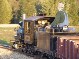 Hillcrest and Wahtoke Railroad 2 by Jetster1