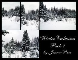Winter Exclusives, Pack 1 by Jenna-Rose