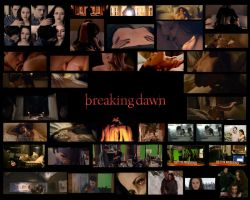 The Twilight Saga Breaking Dawn Wallpaper Screenca by Maysa2010