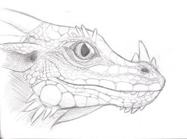 Fully Scaled Dragon Face by Rebeccannoying
