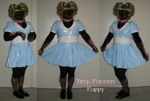 Sissy Princess Puppy by TrajanPuppy