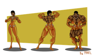 Commission - Vixen muscle growth sequence by MATL