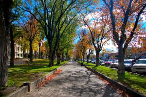 Prescott Scenary II by esee