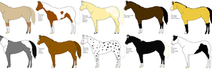 Designs for Painted-cowgirl by ladybird2467