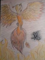 bird on fire by goicesong1