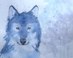 wolf in watercolour by Ada93