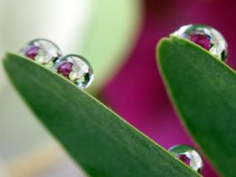 Droplet 3. by Abu-Hany