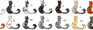 Free Group Adopts by Rayilex