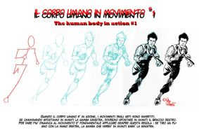 The HUMAN BODY IN ACTION 1 by PinoRinaldi