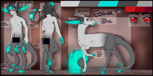 Edgar Reference Sheet 2014 by King-Pass