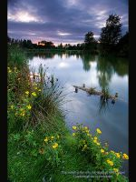 Dusk over Moulden Hill Pond 1 by GMCPhotographics