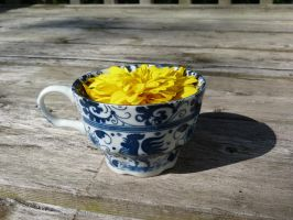 Tea Cup + Flower by Imaginationsis